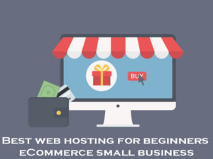 Best-web-hosting-for-beginners-eCommerce-small-business